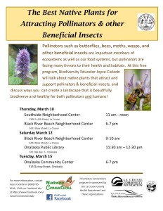 Pollinators & Native Plants Flyer